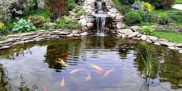Перекись водорода для очистки воды в искусственных водоемах